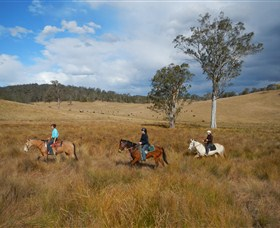 Chapman Valley Horse Riding - Accommodation in Bendigo