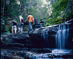 South Lawson Waterfall Circuit - Accommodation in Bendigo