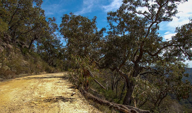 Parr State Conservation Area - Accommodation in Bendigo