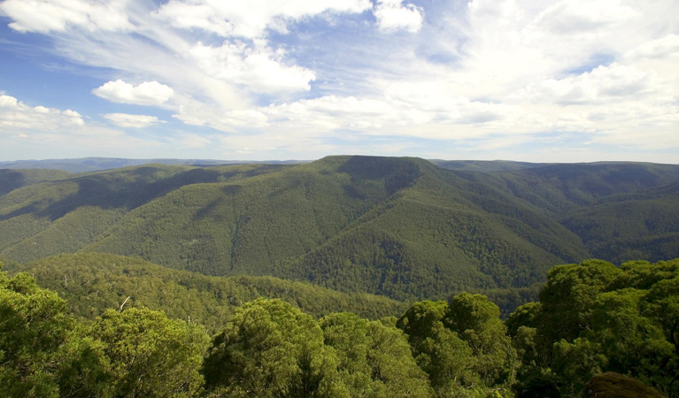 Barrington Tops National Park - Accommodation in Bendigo