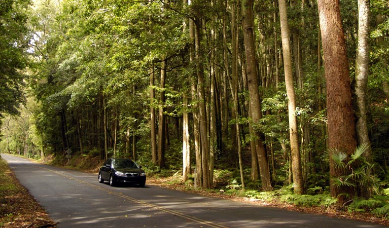 Greater Blue Mountains drive - Accommodation in Bendigo