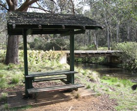 Barrington Tops State Forest - Accommodation in Bendigo