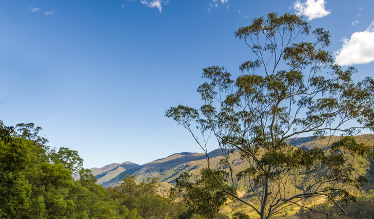 Woko National Park - Accommodation in Bendigo