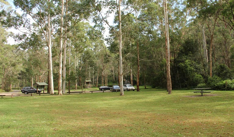 Mill Creek picnic area - Accommodation in Bendigo