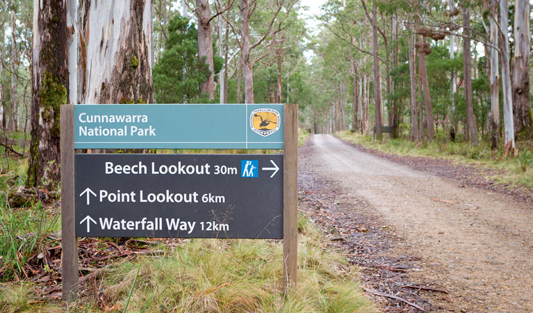 Beech lookout - Accommodation in Bendigo