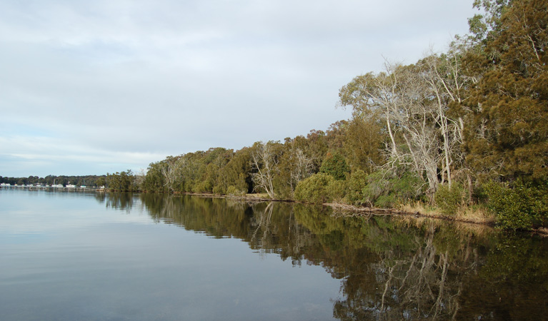 Lake Macquarie State Conservation Area - Accommodation in Bendigo