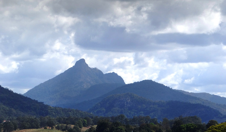 Wollumbin National Park - Accommodation in Bendigo