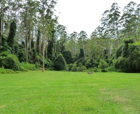 Kerewong State Forest - Accommodation in Bendigo