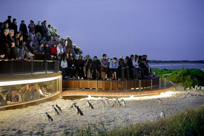 Day Private Phillip Island Tour VIP Charter up to  People