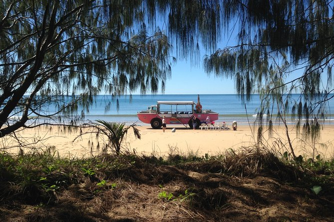 1770 Coastline Tour by LARC Amphibious Vehicle Including Picnic Lunch - Accommodation in Bendigo