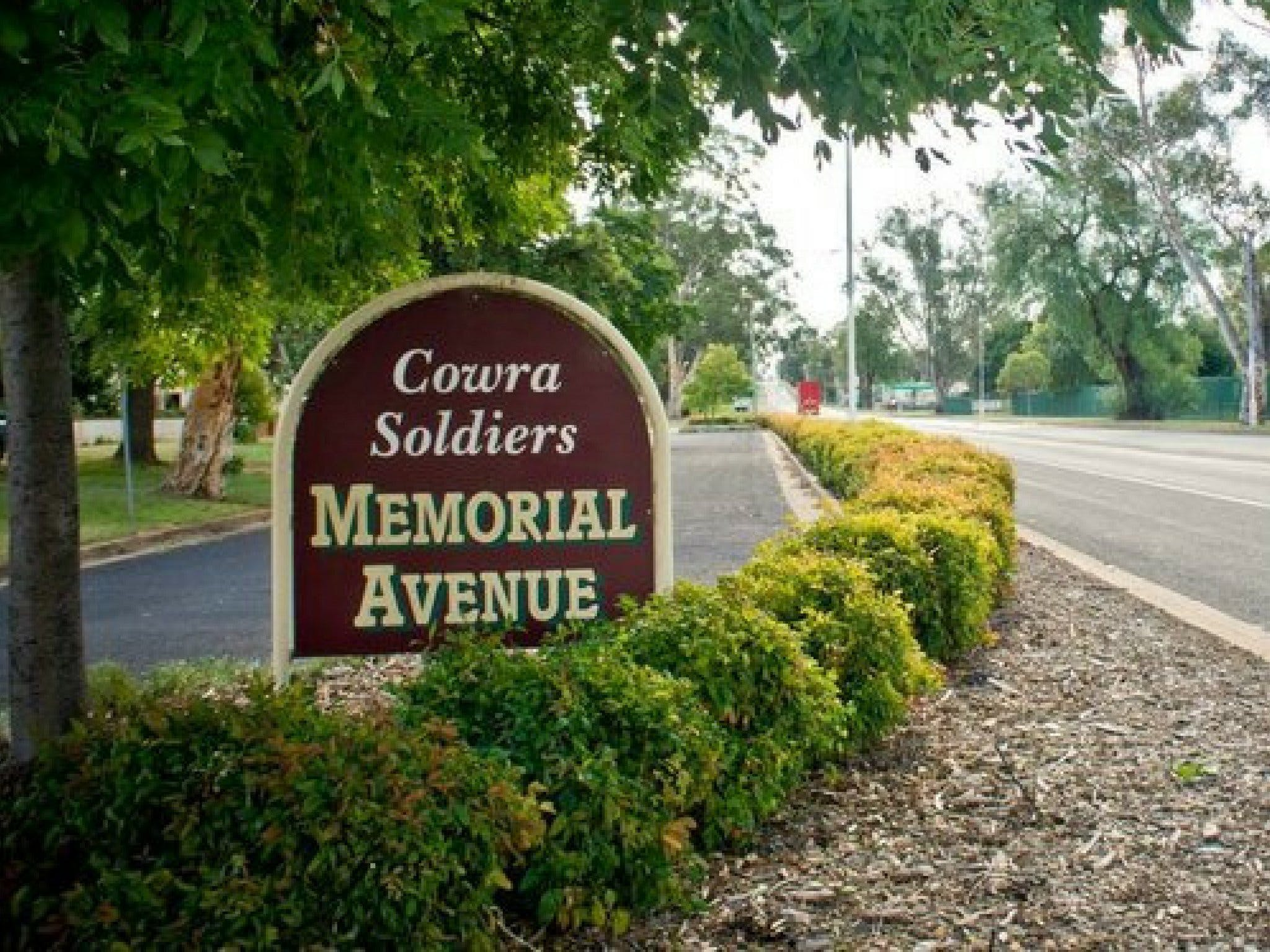 Memorial Avenue in Cowra - Accommodation in Bendigo