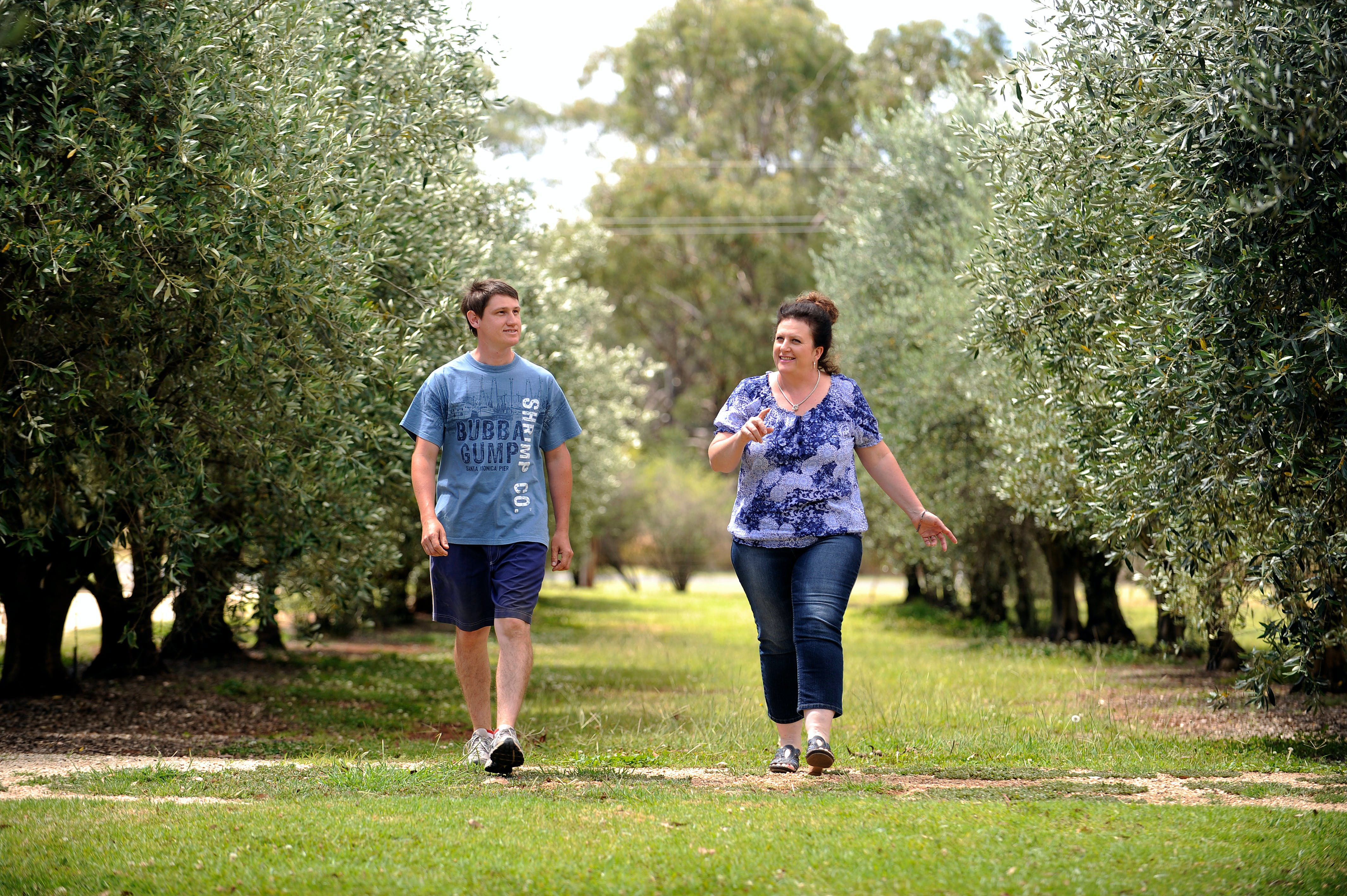 Olives of Beaulieu - Accommodation in Bendigo