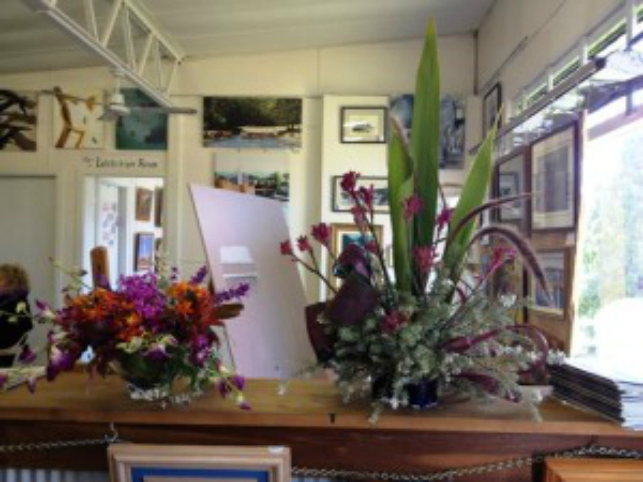 Dungog Arts Society - Accommodation in Bendigo