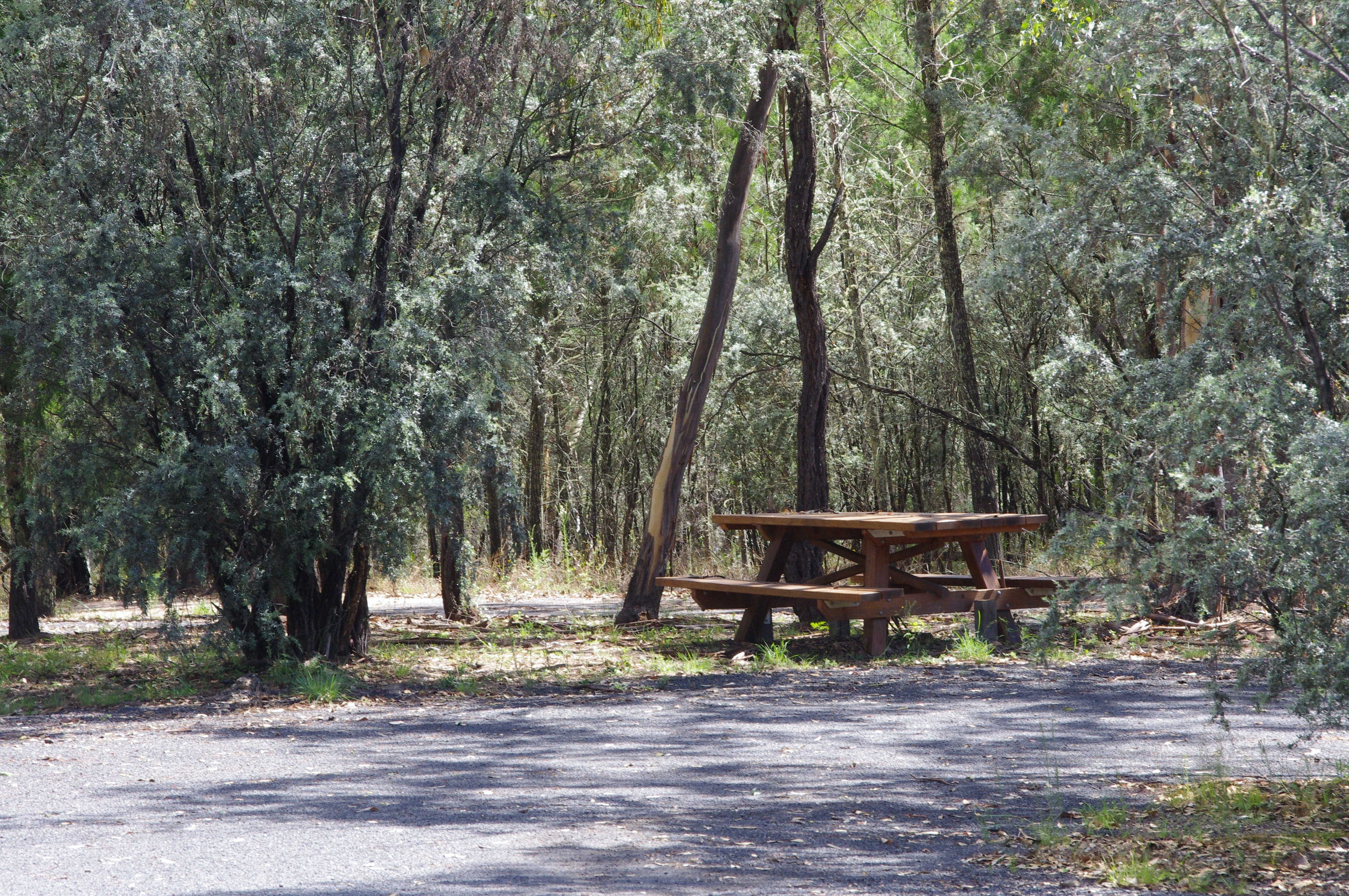 Goonoowigall State Conservation Area - Accommodation in Bendigo