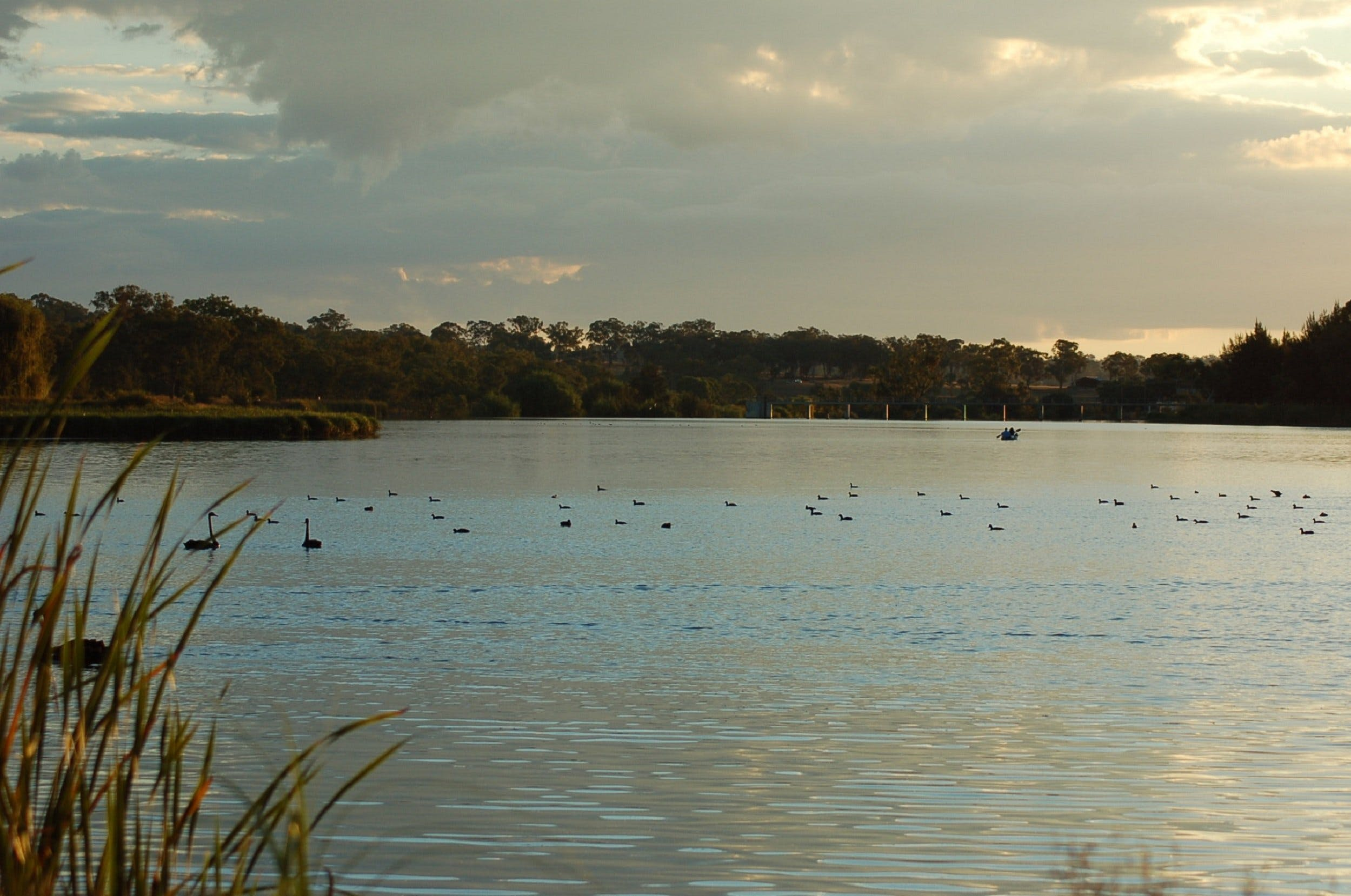 Lake Inverell Reserve - Accommodation in Bendigo