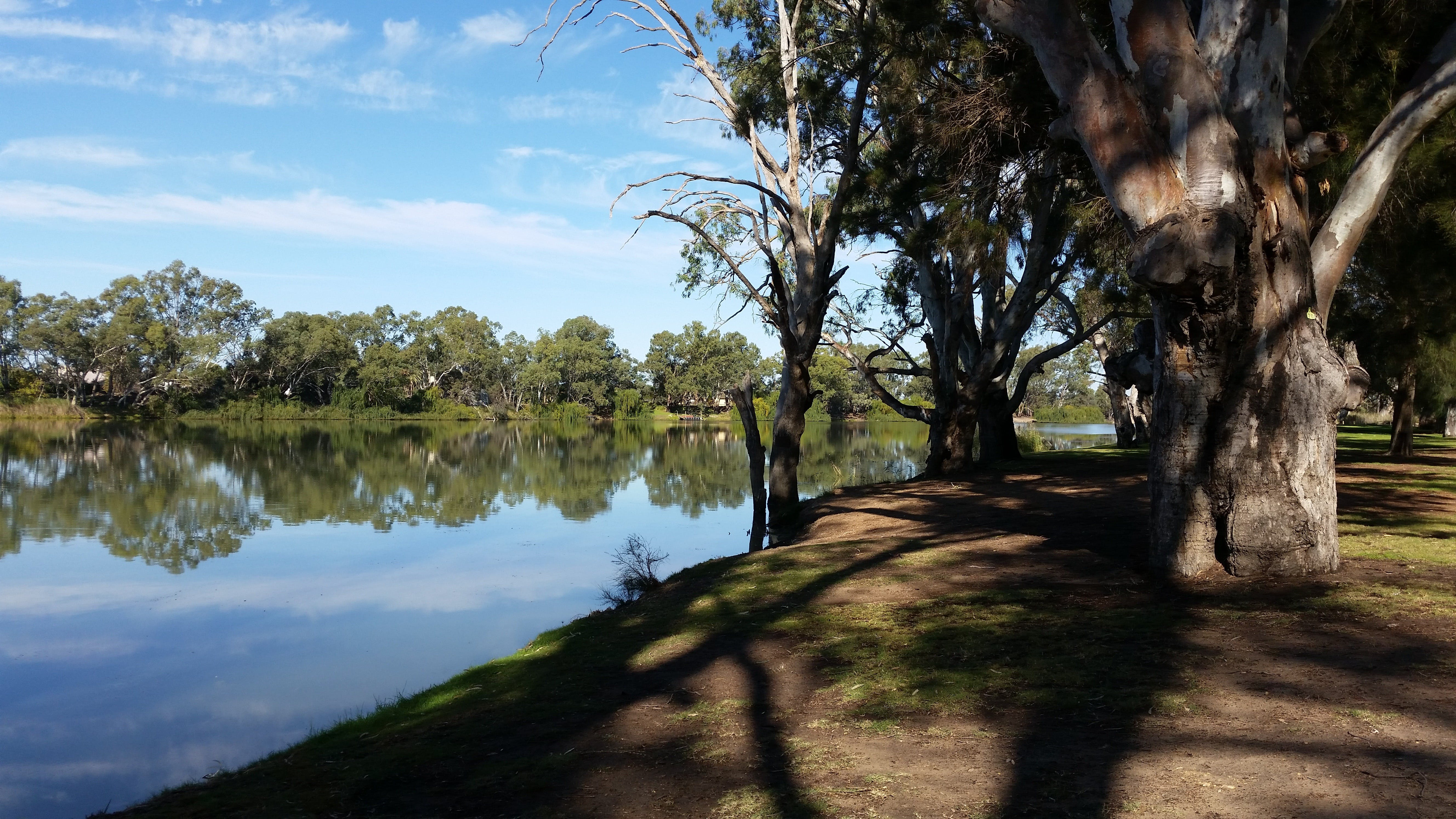 Murray River National Park - Katarapko - Accommodation in Bendigo