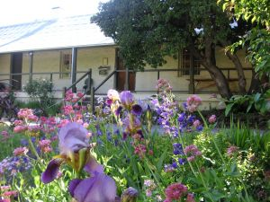 Raglan Gallery And Cultural Centre - Accommodation in Bendigo