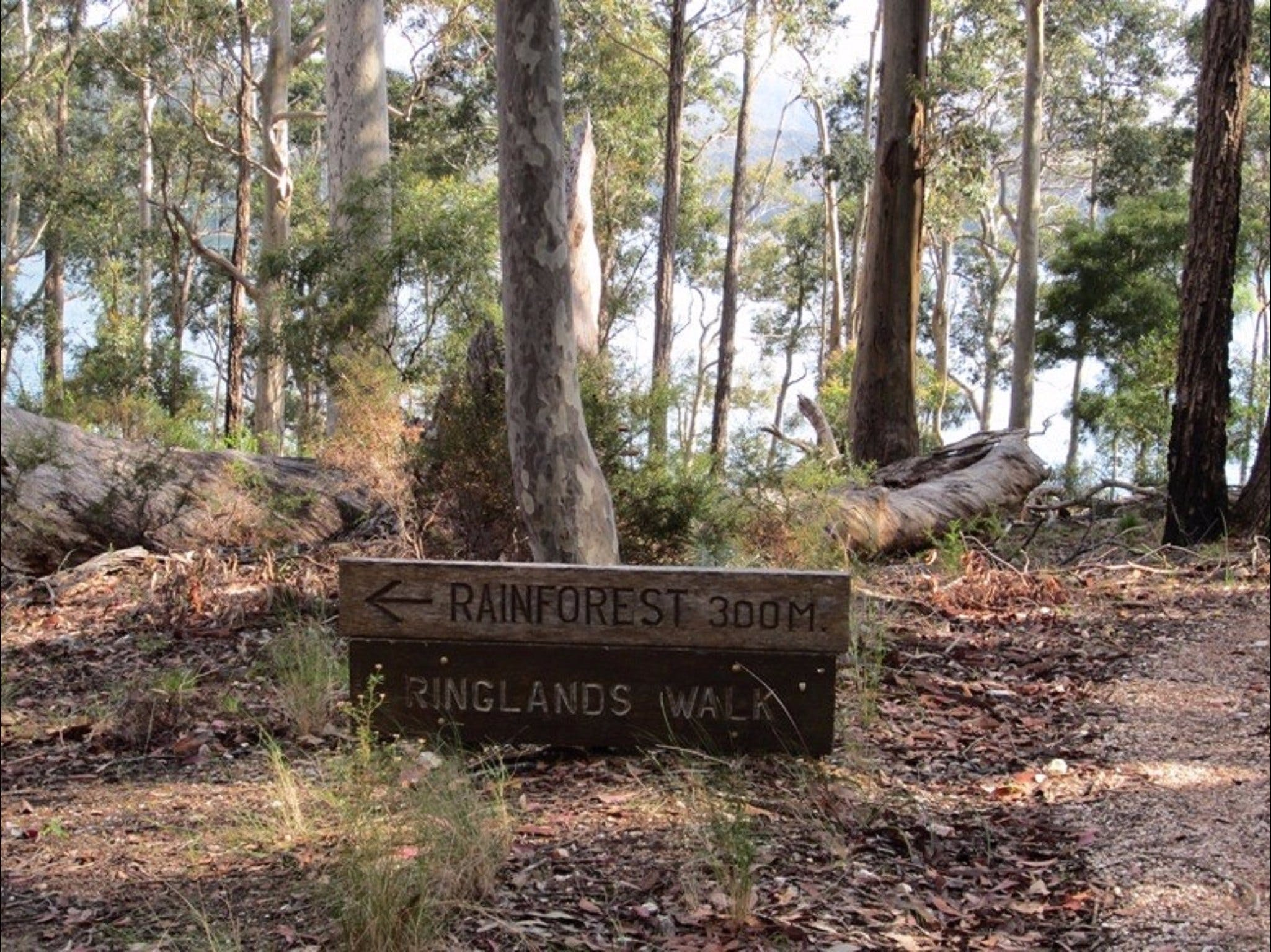 Ringlands Rotary Walk Narooma - Accommodation in Bendigo