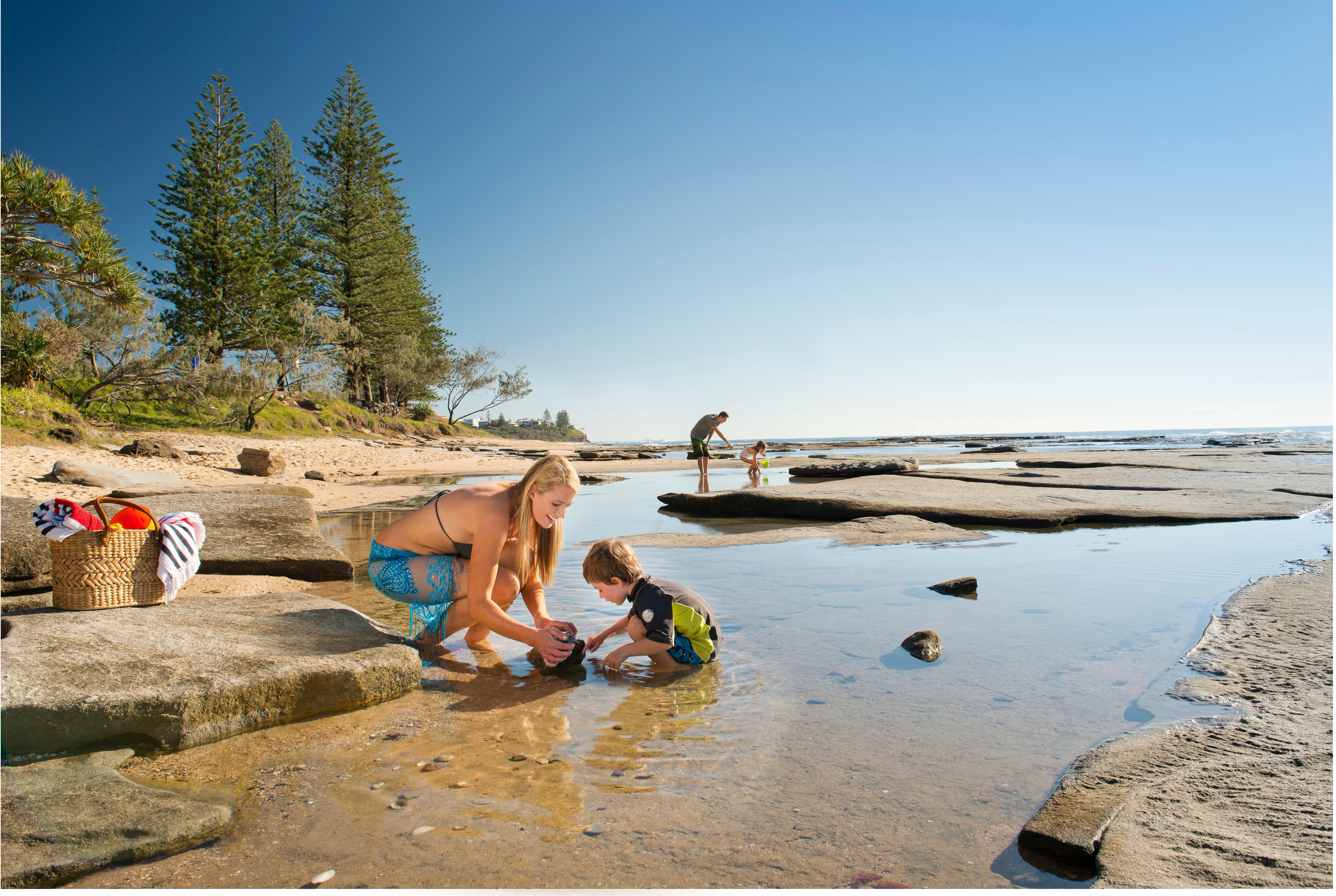 Shelly Beach - Accommodation in Bendigo