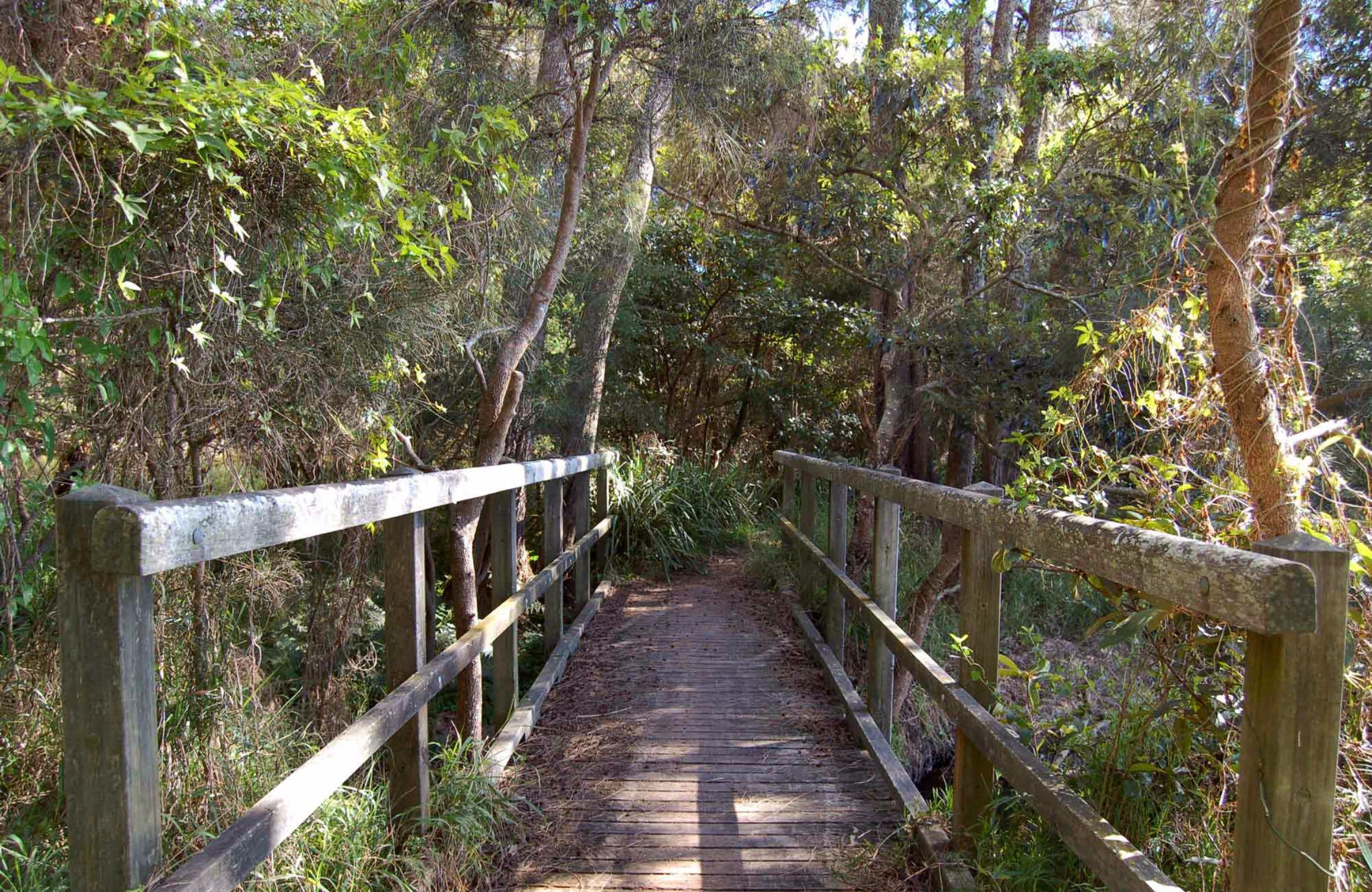 Awaba Bay Foreshore Walk - Accommodation in Bendigo