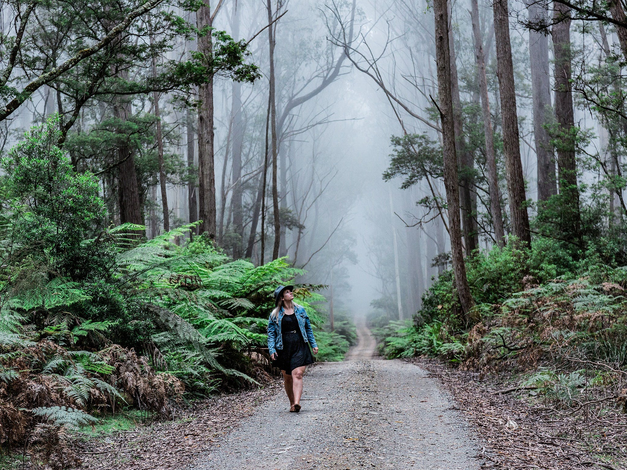 The Corn Trail Walking Track - Accommodation in Bendigo