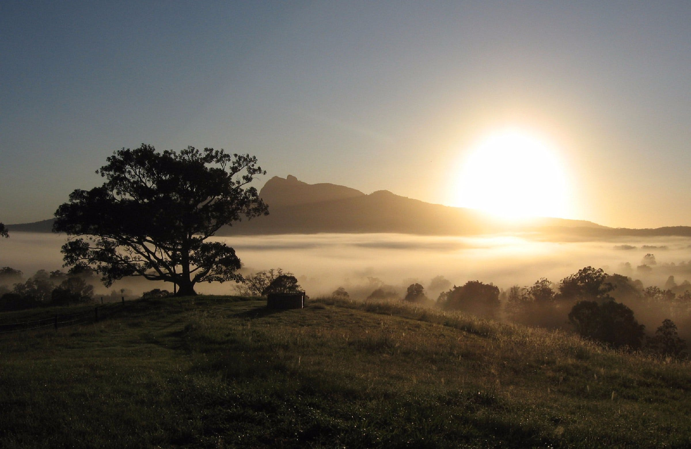 Wollumbin-Mount Warning National Park - Accommodation in Bendigo