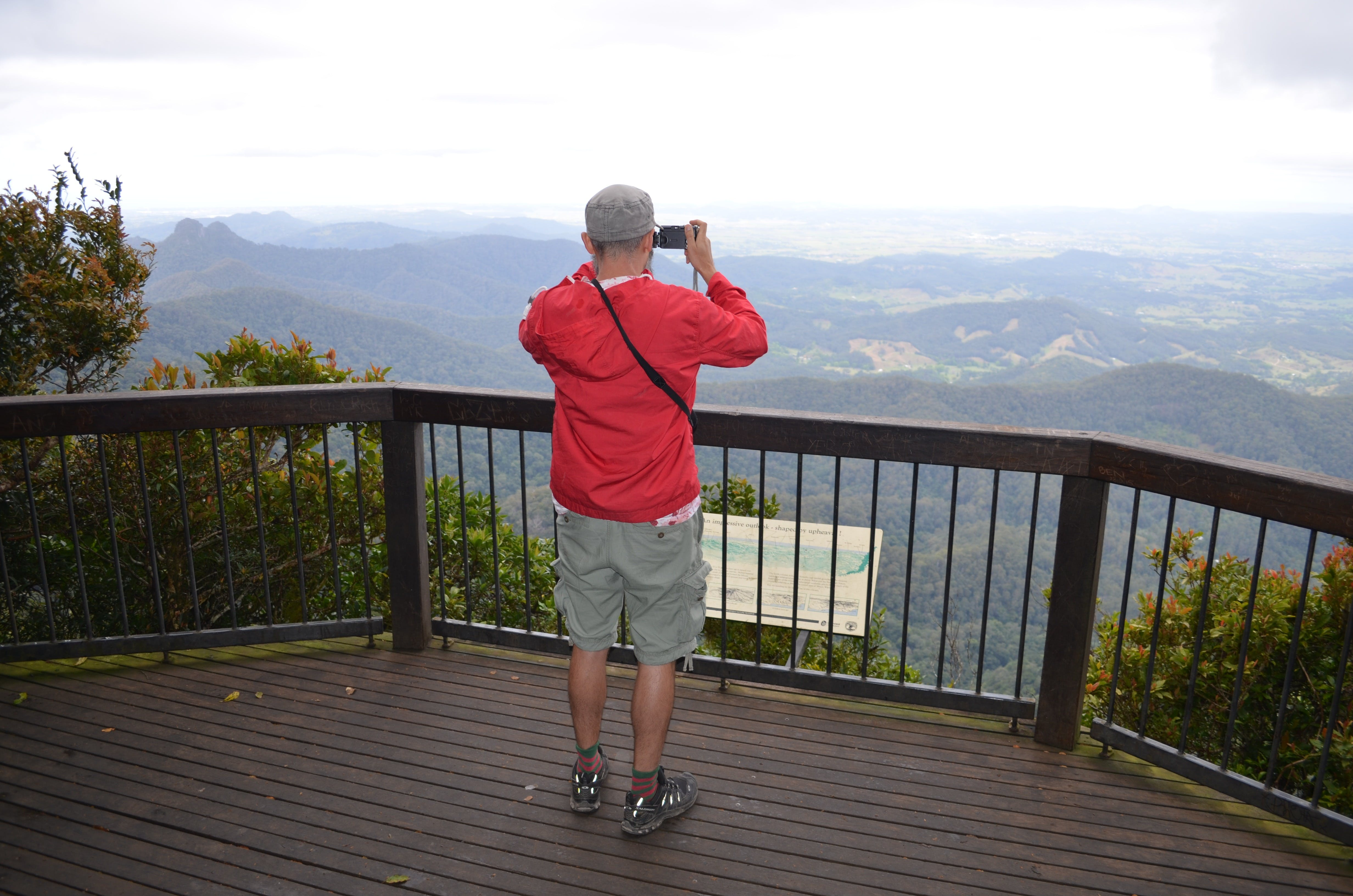 Best of All lookout track Springbrook National Park - Accommodation in Bendigo