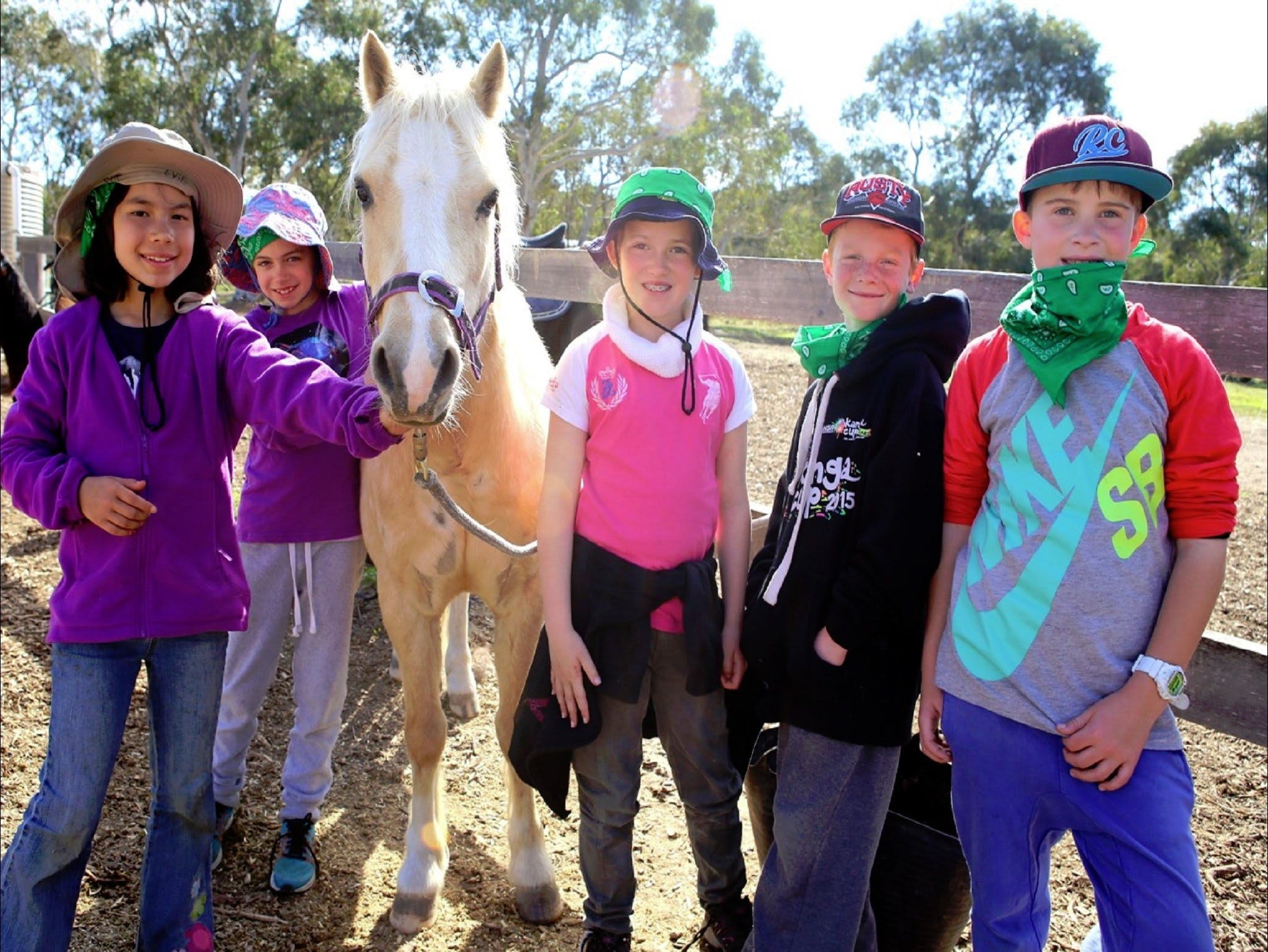 The Saddle Camp - Accommodation in Bendigo