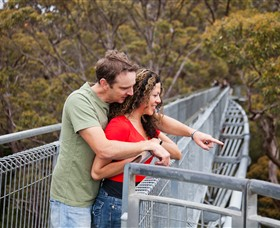 Valley of the Giants Tree Top Walk - Accommodation in Bendigo