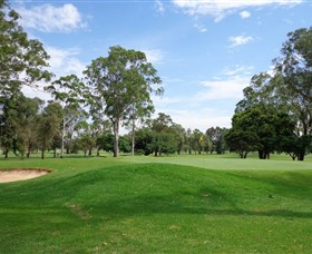 Singleton Golf Club - Accommodation in Bendigo