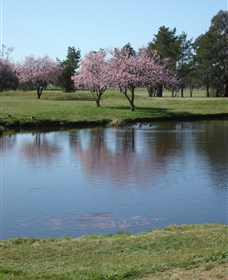 RMC Golf Club - Accommodation in Bendigo