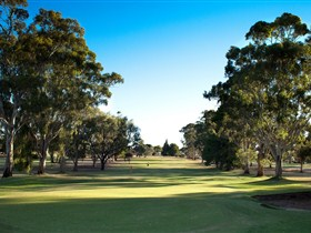 Loxton Golf Club - Accommodation in Bendigo