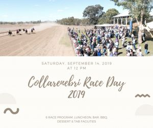 Collarenebri Races - Accommodation in Bendigo