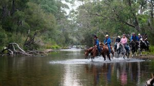 The Man From Snowy River Bush Festival - Accommodation in Bendigo