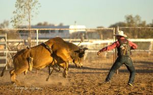 Walgett Charity Bushman's Carnival Rodeo and Campdraft - Accommodation in Bendigo