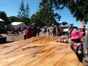 Maleny Wood Expo From Seed to Fine Furniture - Accommodation in Bendigo