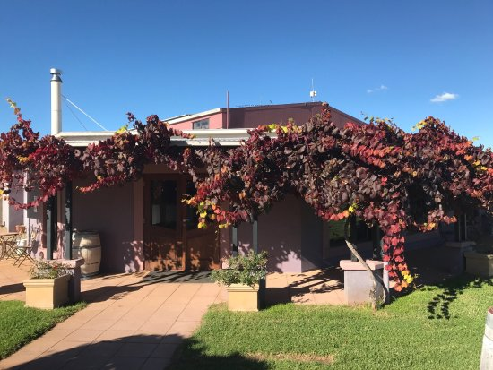 Jester Hill Wines - Accommodation in Bendigo