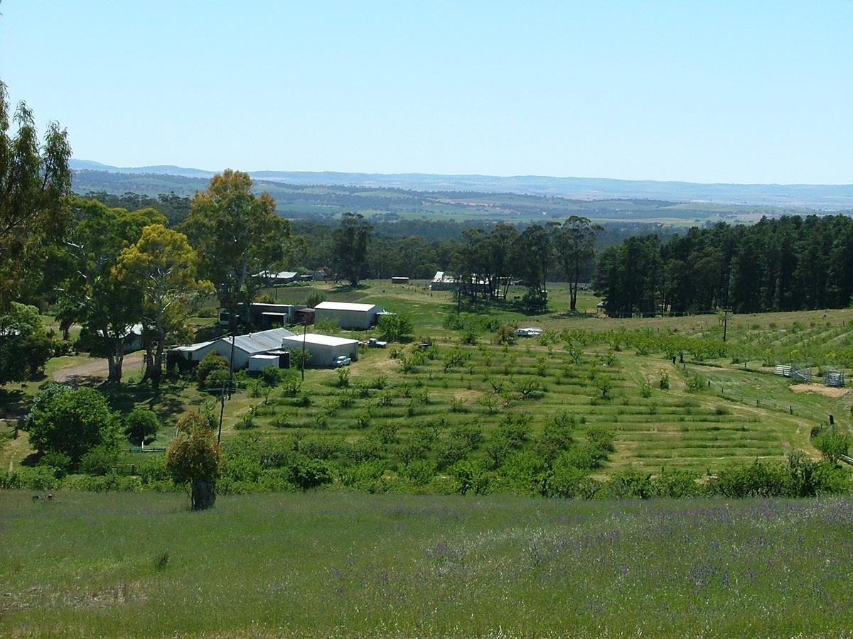 Taralee Orchards - Accommodation in Bendigo